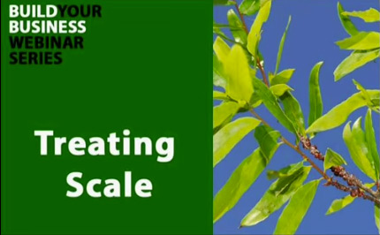 Treating-Scale