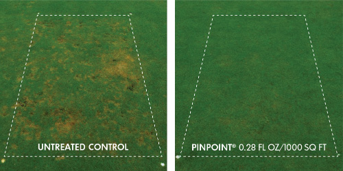 Pinpoint Fungicide Data